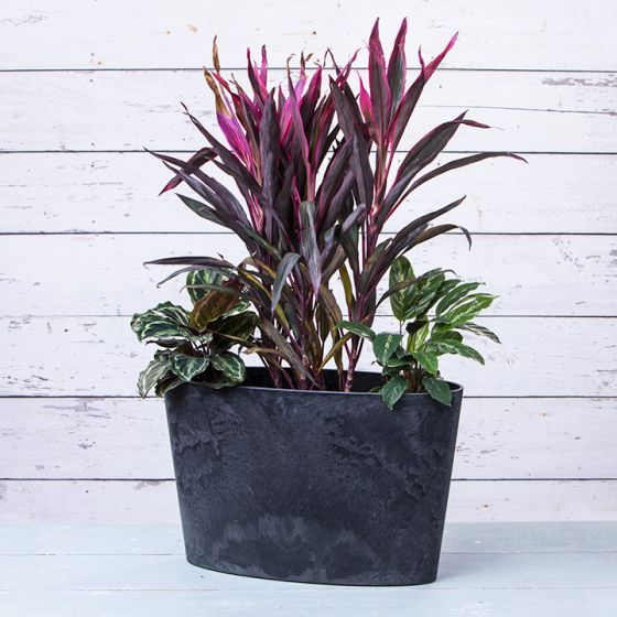 Napa Oval Planter