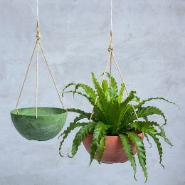 Napa Hanging Bowl Planter