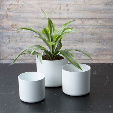 Lena Round Planters, Set of Three