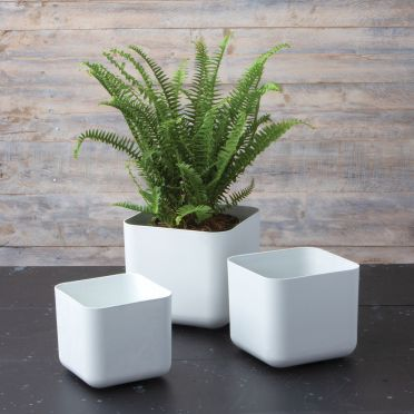 Rubi Square Planters, Set of Three