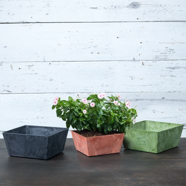 Ella Low Square Planter