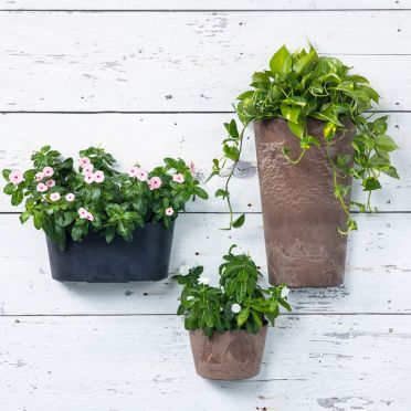 Napa Wall Pot